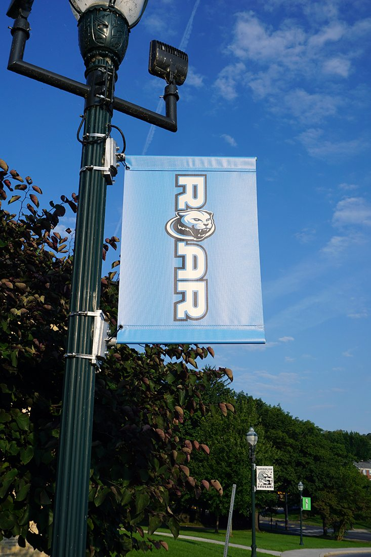 Harrisburg-HS-Pole-Banner-Blue - Purpose1